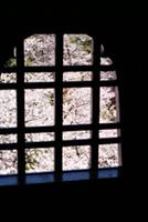 国宝 松本城 社会見学の記憶